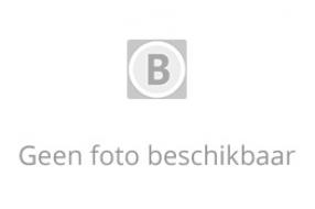 Onderzoek naar agenten die bij schietpartijen Boekel, Tilburg en Eindhoven schoten losten