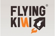 Flying Kiwi Logo