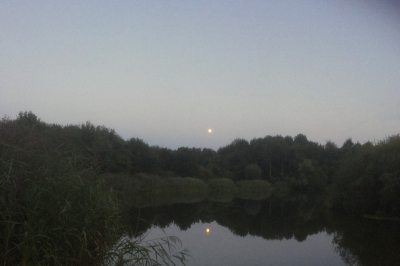 Evenement: Publiekswandeling De Barendonk en Ossenbroek