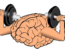 Effectiever leren: 10 tips om meer uit uw brein te halen!